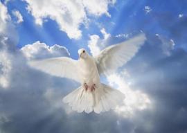 Primo giorno della Novena di Pentecoste con riferimenti alle Opere di Maria Valtorta
